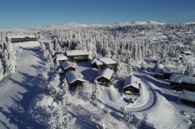 Aurdal Fjellpark Valdres