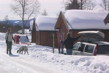 Beitostølen Hytter og Camping, cabins, Valdres, Norway
