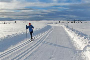 Photo: Storefjell Resort