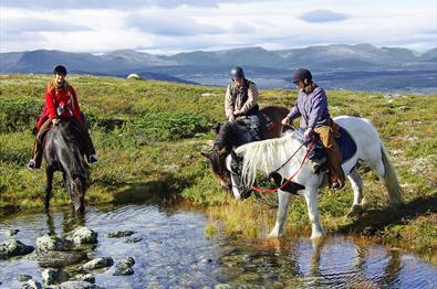Storefjell Riding Centre