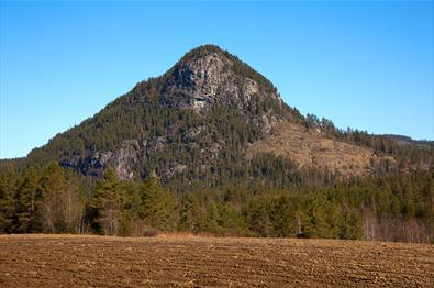 Et oppreist, spisst og skogkledd fjell med bratte bergvegger.