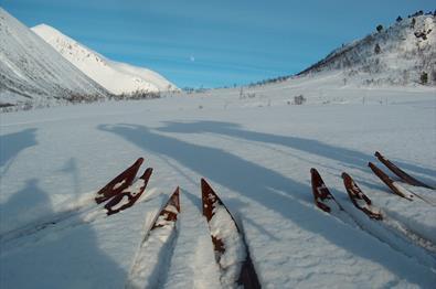 Ski-making course