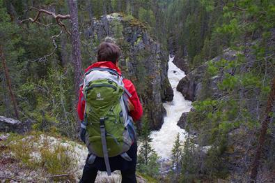 En kvinne med ryggsekk står ved et utsiktspunkt over et elvejuv i barskog.
