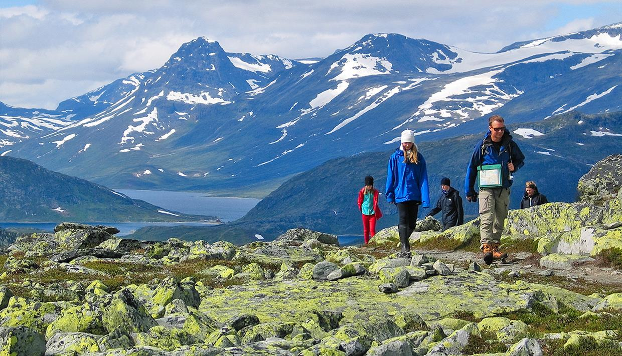 Hikers in the mountain pass a section with a lot of lichen-covered rocks. A lake and high mountains in the background.