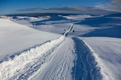 A cross-country skiing track stretches over an undulating high plateau as far as the eye can see.