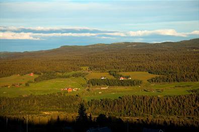 Utsikt fra Brattstølen mot gårder på andre side av Tisleidalen i kveldssol.