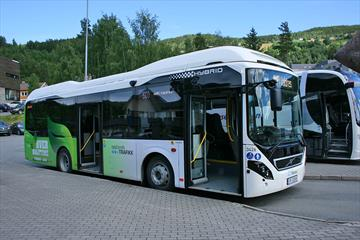 Bybuss Fagernes - Leira