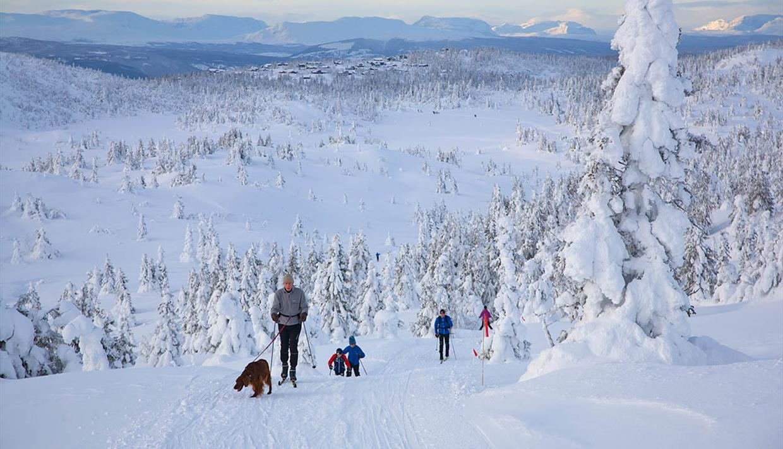 Familie på langrennstur, snødekkede trær og utsikt til fjelltopper i horistonten.