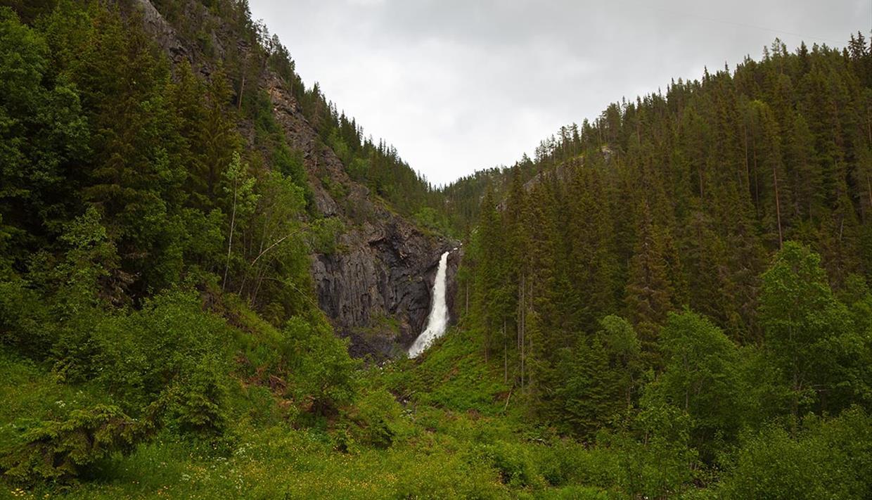 Gjuvfossen i Etnedal skiller seg markant ut fra den frodige skogen rundt.