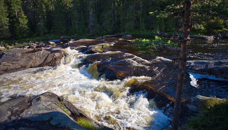 Stryk i elva Hølera, riktignok litt lenger nedstrøms enn der man møter den på sykkelturen Hølervassrunden.