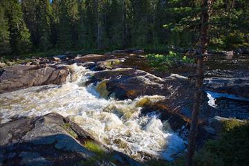 Stromschnellern in der Hølera, etwas weiter flussabwärts von wo man den Fluss auf der Radtour Hølervassrunden erlebt.