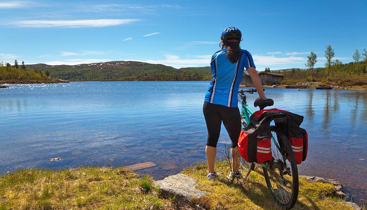 Female cyclist with a blue cycling shirt stands next to her bike looking out on a blue lake.