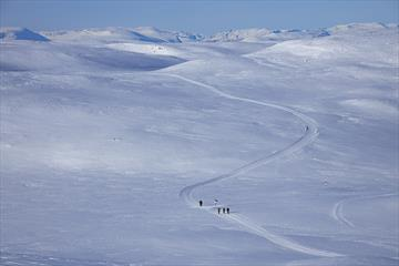 Eine Skiloipe zieht sich über eine Hochebene über der Baumgrenze. Hohe Berge im Hintergrund