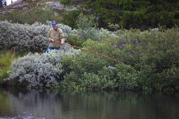 Fisker ved Lomtjedne på Aurdalsåsen
