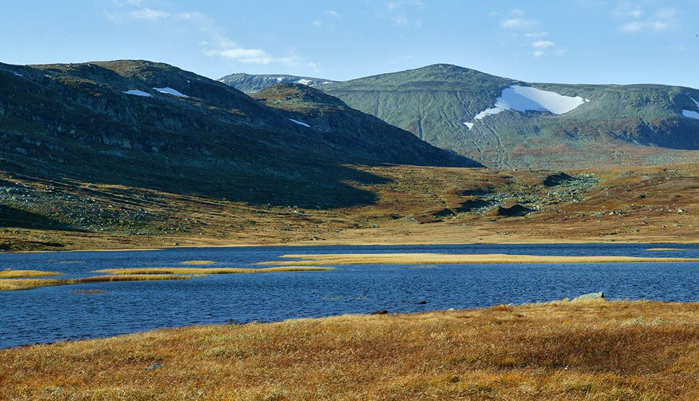 Rjupetjednet med Heimre Fagerdalshøe til venstre og Rasle i bakgrunnen.