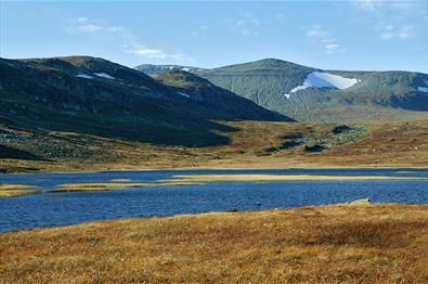 Der Rjupetjednet mit der Heimre Fagerdalshøe zur Linken und dem Rasle am Horizont in der Bildmitte.