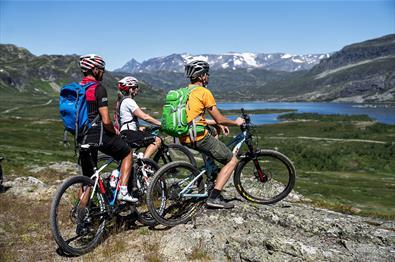 Mjølkevegen via Slettefjellet - Aussicht zum See Fleinsendin und dem Berg Knutsholstinden.