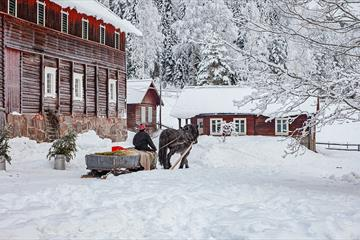 Horse and sleigh in the farm yard at Piltingsrud in the snow.