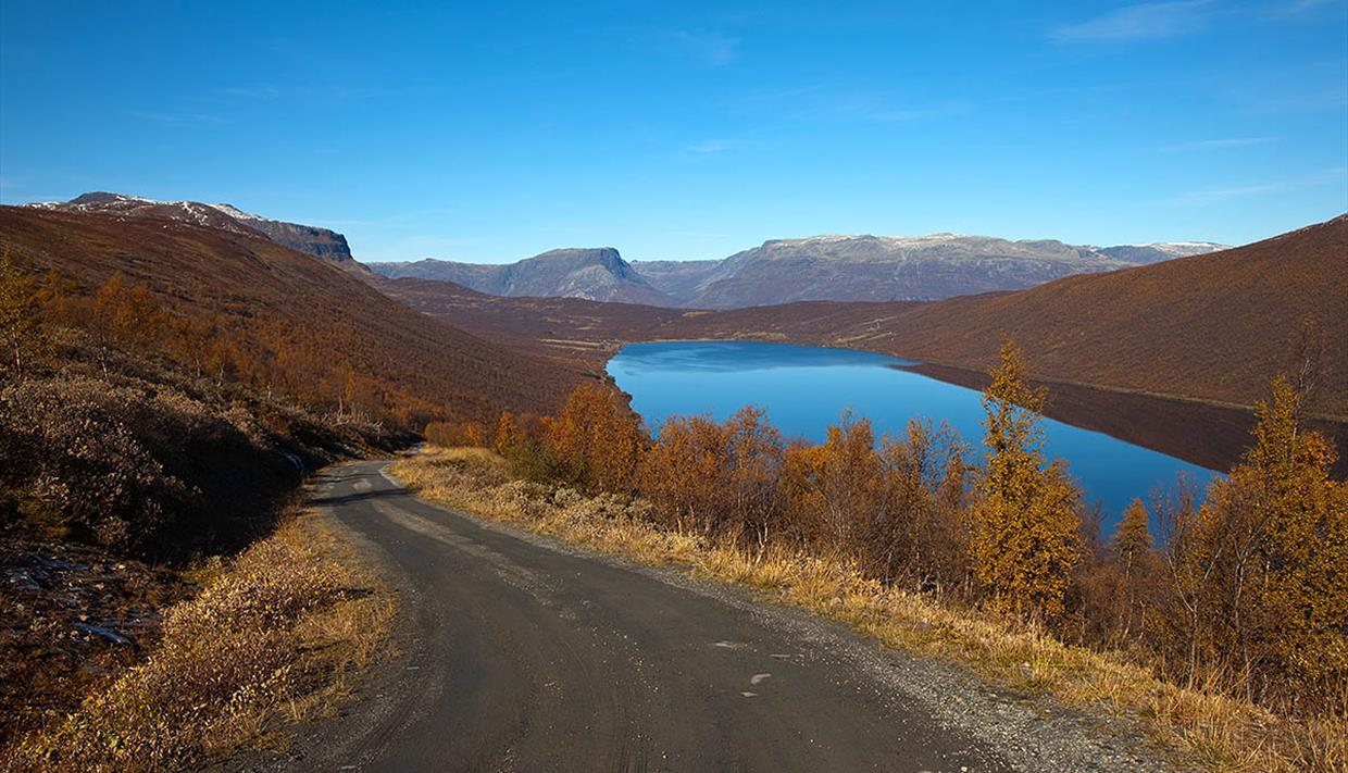 On the hill towards the highest point of the road over the pass Smådalsfjellet with a mesmerizing view over Lake Helin. The sky is blue and the birch