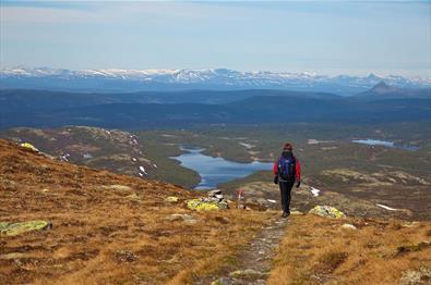 Eine Person wandert auf einem Pfad auf eine großartige Aussicht mit Seen, mehreren Hügelketten und schneebedecktemn Hochgebirge im Hintergrund zu.