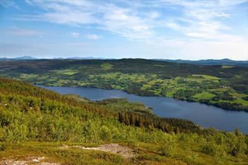 """View from Jutulknatten over Lake Steinsetfjorden og towards Goaren (the hill on the far side of the lake). The cycling tour """"Steinsetfjorden rundt"""" le"""