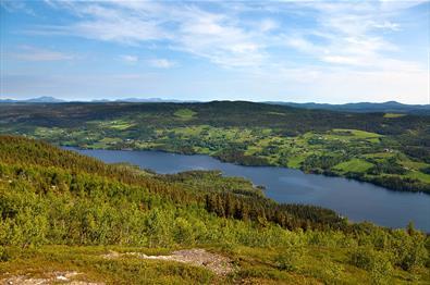 """Aussicht vom Jutulknatten über den Steinsetfjorden zum Goaren (die Anhöhe auf der gegenüberliegenden Seite). Die Fahrradrunde """"Steinsetfjorden rundt"""" führt um den See."""