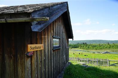Svarthamar DNT-hytte en sommerdag