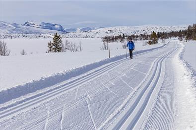 Ein Langläufer in einer breiten Doppelloipe entlang eines verschneiten Sees mit einem charakteristischen, steilen Berg im Hintergrund.