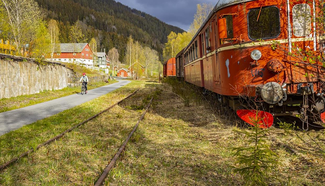 At the old Bjørgo station there are still to grass overgrown train tracks and a red train, consisting of a locomotive and a couple of wagons. A cyclis