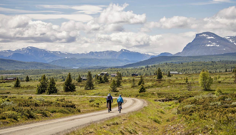 Sykling langs Mjølkevegen med utsikt til fjellene