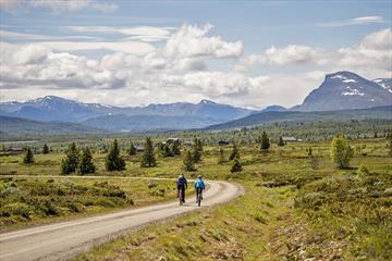 Fahrradfahren auf dem Mjølkevegen mit schöner Aussicht zu den Bergen.