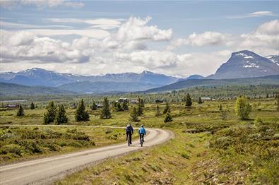 Cycling along Mjølkevegen with a beautiful view towards mountains.