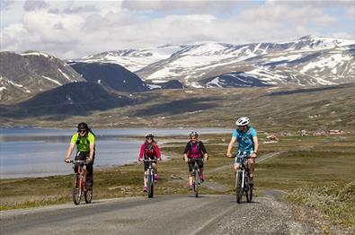 Der Jotunheimvegen ist ein Teil des Mjølkevegen. Radeln in herrlicher Bergnatur.