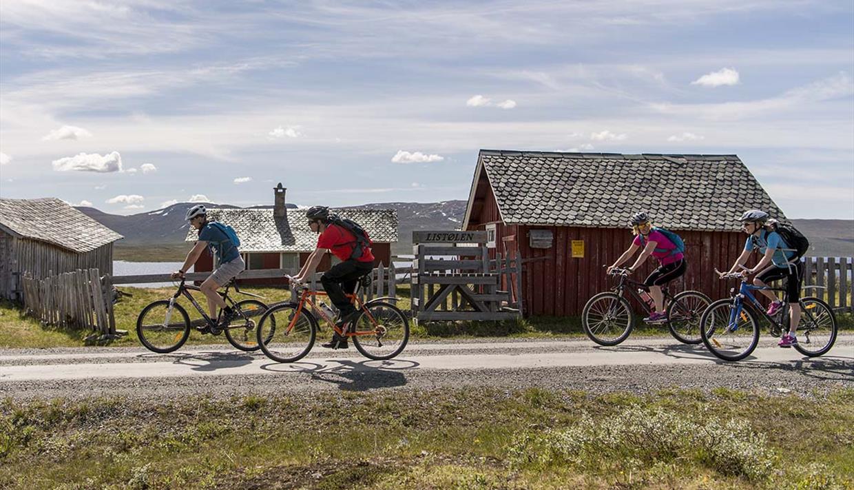 Cycling along Jotunheimvegen - a part of Mjølkevegen