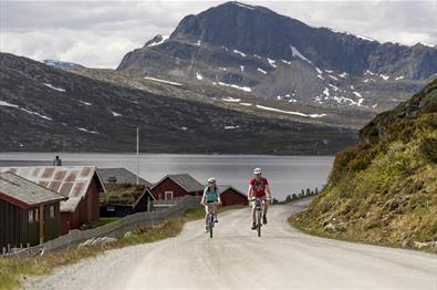 Entlang des Jotunheimvegen, der ein Teild er Fahrradroute Mjølkevegen ist, mit dem Bitihorn im Hintergrund.
