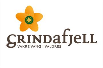 Grindafjell logo