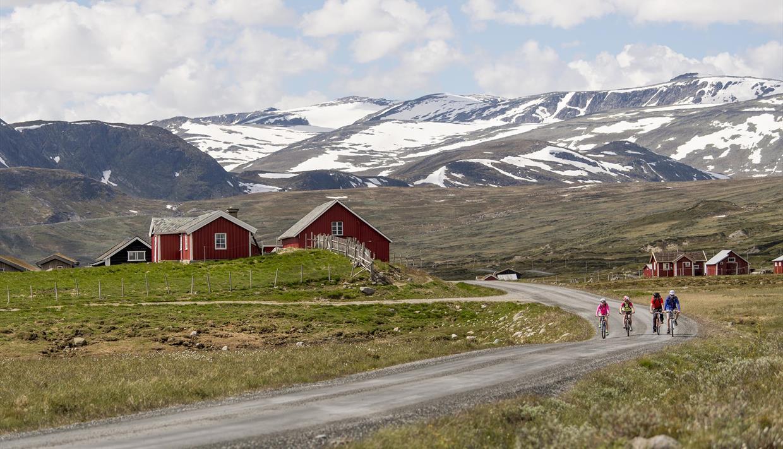 Vier Radler auf einer Schotterstraße in den Bergen. Sie fahren an roten Almhütten vorbei, und im Hintergrund liegen schneebedeckte hohe Berge.