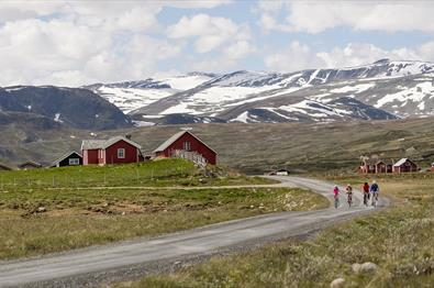 Four cyclists on a mountain gravel road. They are passing by red farm houses and in the background there are snow-capped high mountains.