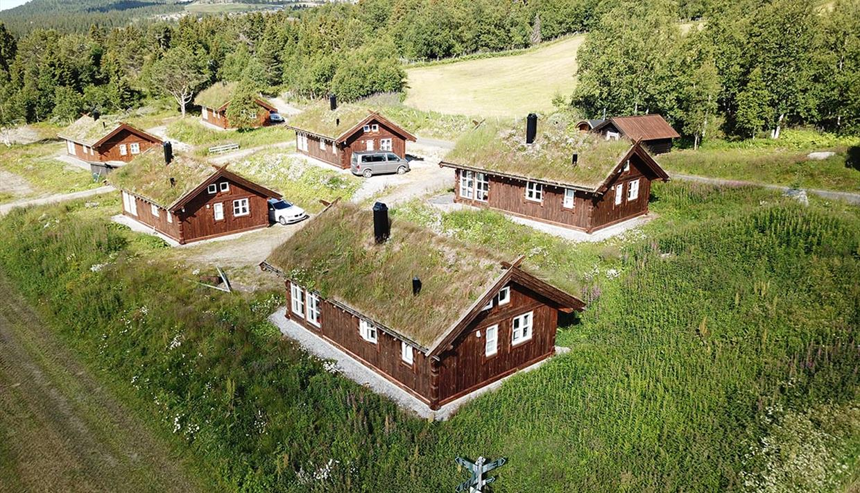 6 traditional wooden cabins with grass roof surrounded by lush birch forest and meadow.