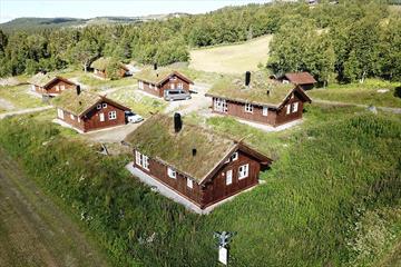 6 traditionelle Holzhütten mit Grasdach liegen in einer üppigen Wiese am Birkenwald.