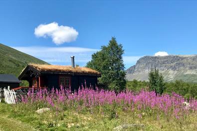 Holzhütte mit Grasdach, umgeben von blühenden Weidenröschen.