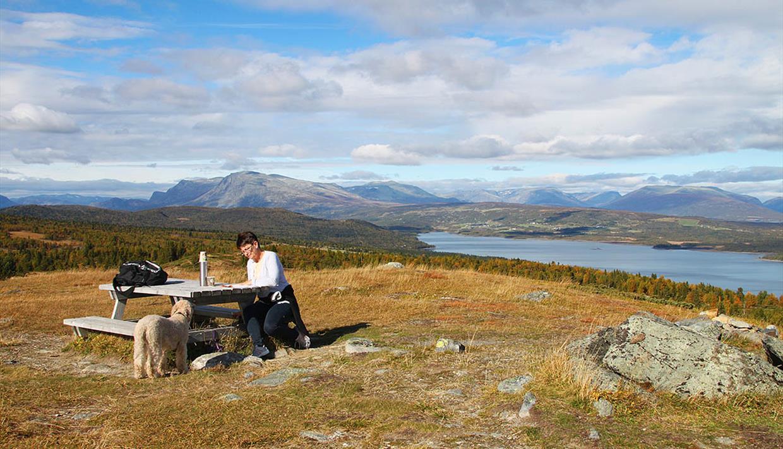 Die Rstplätze auf dem Golsfjellet haben eine schöne Aussicht zu Bergen und Seen.