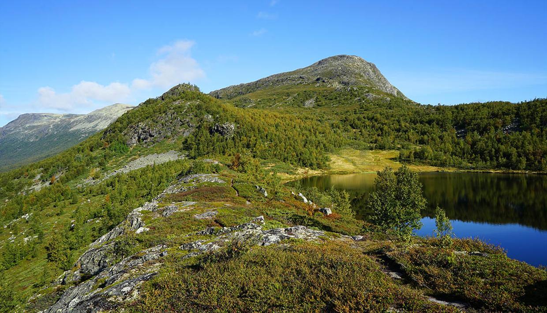 Ein kleiner Bergsee an der Baumgrenze mit Bergen dahinter. Blauer Himmel und kristallklare Herbstluft.