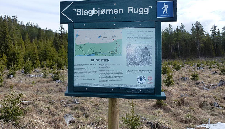 Informationstafel am Rugg-Weg