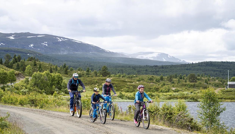 En familie sykler på fin grusvei langs Vasetvatnet.