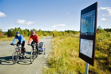 Cycling across Golsfjellet