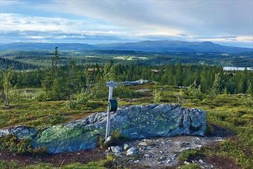 Utsikt fra Vardafjell med turpostkasse over vid lavfjellsterreng med skoger og vann mot Synnfjellet.