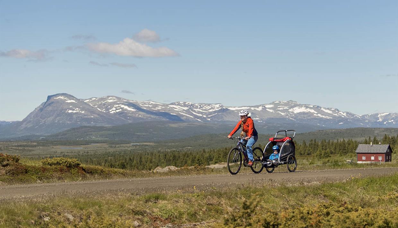 Syklist med barnetilhenger i åpent stølslandskap med fjell i bakgrunnen.