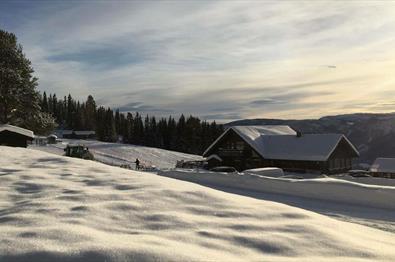 Valdres Alpin Apartments