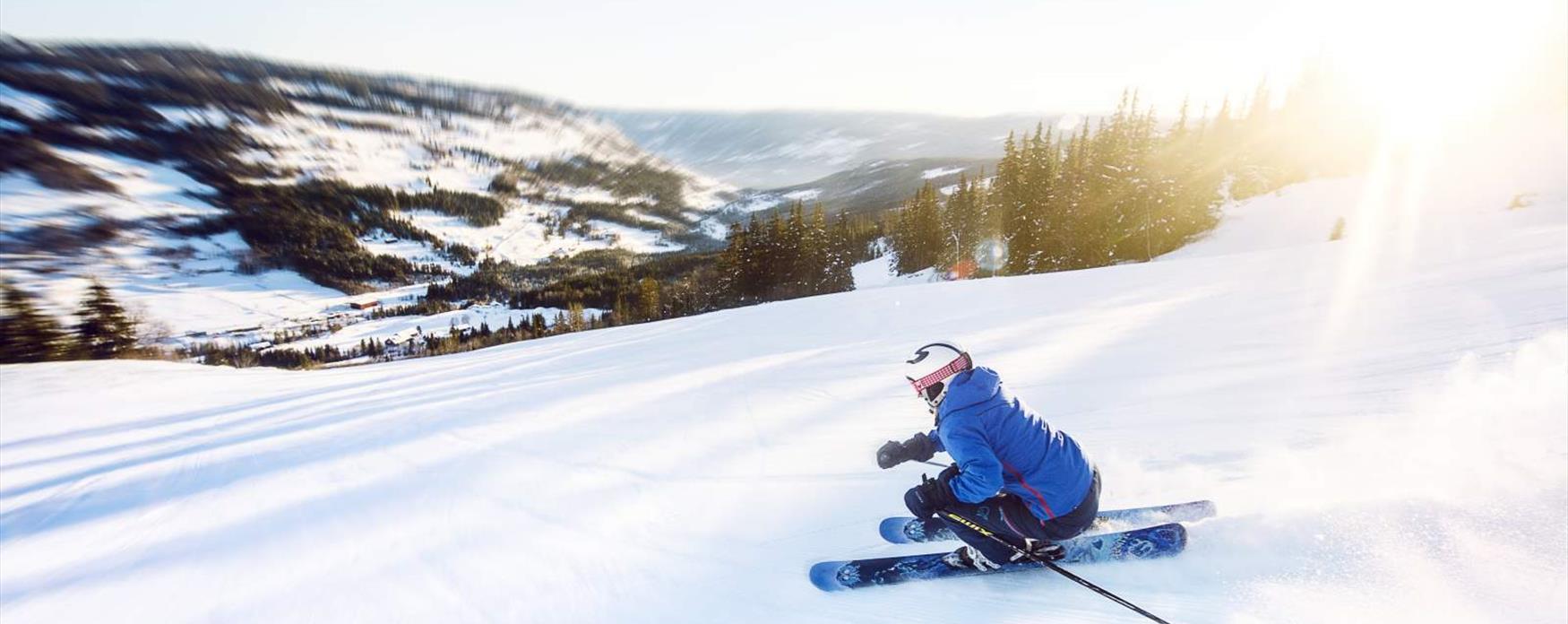 Downhill skiing in Ål